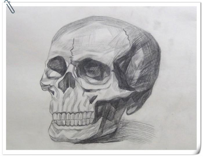 素描·骷髅头