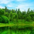 yangyongzhuang105105