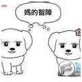 jian5501